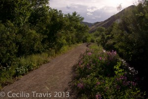 Trail along irrigation ditch