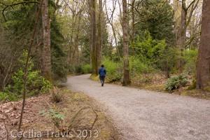 Belleview Botanic Gardens