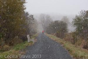 Gibson Trail