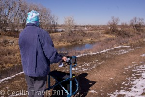 Viewing ducks on the South Platte, South Platte Park
