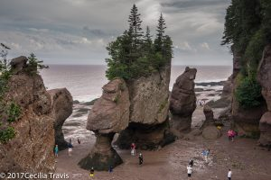 Flowerpot Rocks, Bay of Fundy National Park, New Brunswick