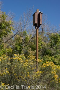Bat houses at Audubon's Discovery trail at Chatfield State Park