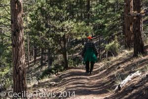 Alder Bench Trail