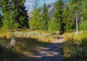 Murdock Creek Trail